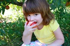 Meisje dat appel eet Stock Foto's