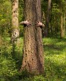 Meisje dat boom koestert Royalty-vrije Stock Foto's