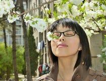 Meisje dat de bloemen ruikt Royalty-vrije Stock Afbeelding