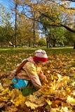 Meisje dat de herfstbladeren verzamelt Royalty-vrije Stock Afbeeldingen