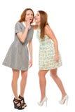 Meisje dat een geheim fluistert aan haar vriend stock fotografie