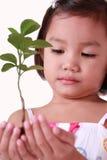 Meisje dat een jonge boom houdt stock afbeelding