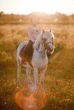 Meisje dat een paard berijdt royalty-vrije stock afbeelding