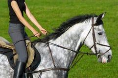 Meisje dat een paard berijdt Stock Foto's