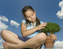 Meisje dat kleine boom houdt stock fotografie