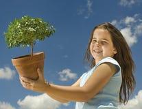 Meisje dat kleine boom houdt stock foto