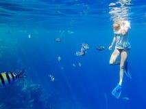 Meisje dat onder vissen snorkelt stock afbeeldingen
