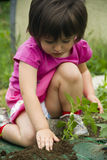 Meisje dat zaailing plant Royalty-vrije Stock Afbeeldingen