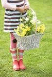 Meisje in de Gele narcissen van de Holding van de Tuin. Stock Foto's