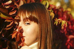 Meisje in de Herfst 1 royalty-vrije stock afbeelding