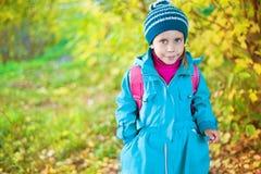 Meisje in de herfstbos stock foto