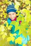 Meisje in de herfstbos royalty-vrije stock afbeeldingen
