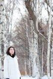 Meisje in de winter royalty-vrije stock fotografie