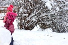 Meisje in de winter royalty-vrije stock afbeeldingen