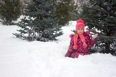 Meisje in de winter stock afbeeldingen