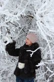 Meisje in de winterbos royalty-vrije stock afbeeldingen