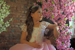Meisje in dichtbij een bloeiende boom Stock Foto's