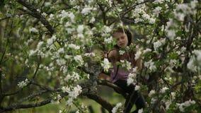 Meisje die aan muziek met hoofdtelefoons luisteren die in de takken van een boom zitten stock footage