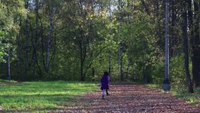 Meisje die afstand in park tegenkomen stock videobeelden