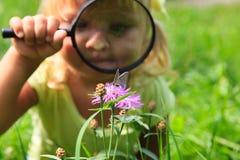 Meisje die batterfies op bloem onderzoeken die vergrootglas met behulp van royalty-vrije stock afbeeldingen