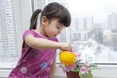 Meisje die de bloemruimte water geven Stock Foto's