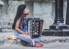 Meisje die de harmonika in Oaxaca van de binnenstad Mexico spelen stock foto