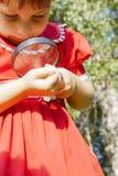 Meisje die door het magnifiying van glas gras bekijken Royalty-vrije Stock Fotografie