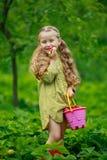 Meisje die een aardbei eten Royalty-vrije Stock Foto's