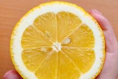 Meisje die een citroen dicht tegenhouden Inlandse citroen, natuurvoeding die het meisje in haar hand op een blauwe achtergrond, r royalty-vrije stock fotografie
