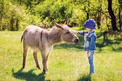 Meisje die een ezel petting royalty-vrije stock fotografie