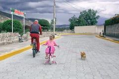 Meisje die een fiets met papa en met een chihuahuahond in openlucht berijden royalty-vrije stock fotografie