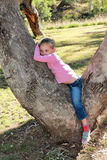 Meisje die in een gomboom leggen Stock Afbeeldingen