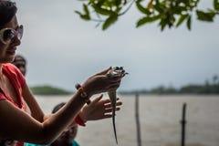 Meisje die een kleine krokodil houden Krokodil die tandenstructuur tonen bij gatorlandbouwbedrijf in everglades stock afbeelding