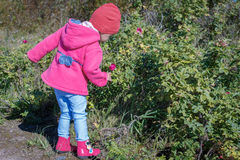 Meisje die in een roze laag, jeans en laarzen het park lopen Stock Afbeelding