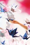 Meisje die een traditionele Japanse die origamizwaan houden uit document wordt gemaakt Zachte nadruk Royalty-vrije Stock Foto's
