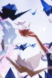 Meisje die een traditionele Japanse die origamizwaan houden uit document wordt gemaakt Zachte nadruk Stock Foto's