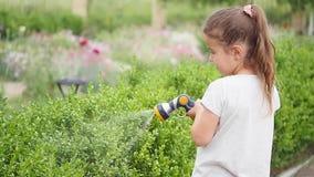 Meisje die groen gras in de tuin water geven Het leuke meisje houdt en bespuitend het gazon op a bestrooi stock video