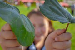 Meisje die groene bladeren houden stock foto