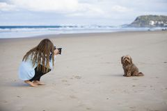 Meisje die hond op strand fotograferen royalty-vrije stock foto's