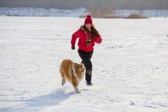 Meisje die met colliehond bij de winterlandschap lopen royalty-vrije stock afbeeldingen