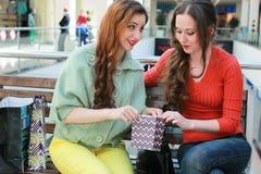 Meisje die met zakken met zijn meisje bij wandelgalerij en het winkelen lopen Stock Afbeeldingen