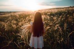 Meisje die op een aar van de de holdingstarwe van het tarwegebied bij mooie zonsondergang lopen Vrijheid en verse luchtconcept royalty-vrije stock foto