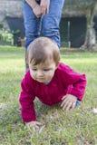 Meisje die op gras kruipen Royalty-vrije Stock Foto
