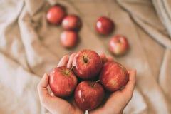 Meisje die rode verse appelen in hand houden Organisch en gezond fruit Sluit omhoog mening van rode appelen royalty-vrije stock fotografie