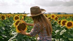 Meisje die van de duim het omhoog gelukkige landbouwer de zonnebloem controleren stock video