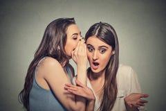 Meisje die in vrouwenoor fluisteren die haar stuitend geheim vertellen Stock Afbeeldingen
