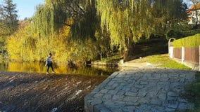 Meisje die in water van waterkering lopen stock videobeelden