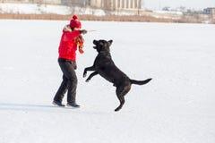 Meisje die zwart Labrador opleiden bij de winterpark stock afbeelding
