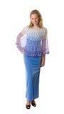 Meisje in een blauwe kleding Royalty-vrije Stock Fotografie