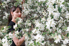 Meisje in een de bloemtuin van de de lenteappel Stock Foto